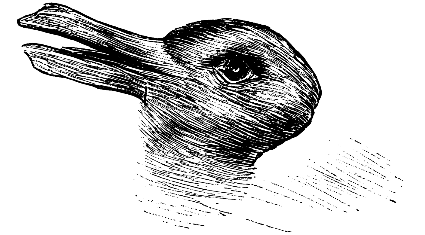 Duck Rabvbit Illusion to illustrate a paradigm shift